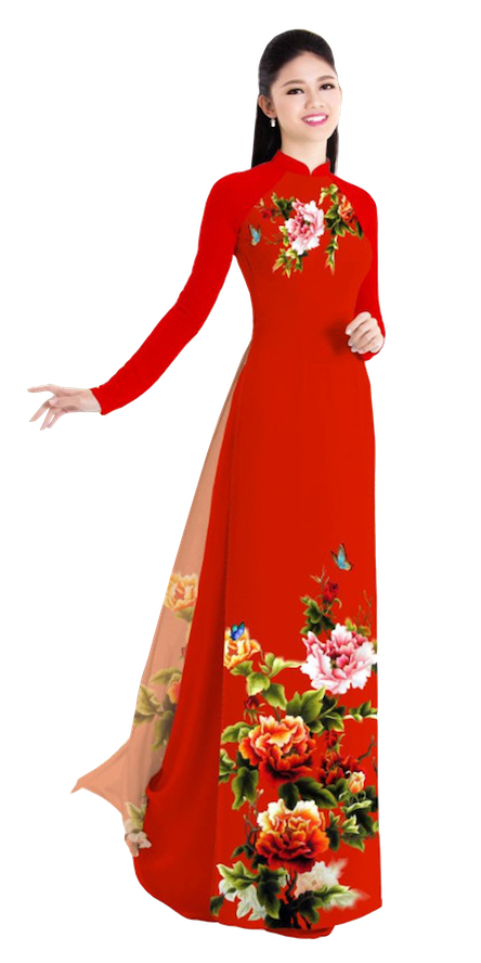Winter Red Ao Dai