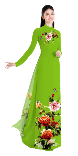 Winter Olive Ao Dai