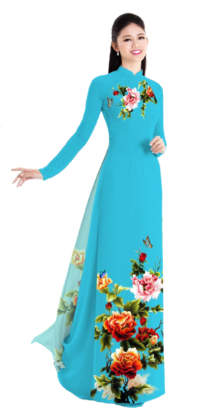 Winter Teal Ao Dai