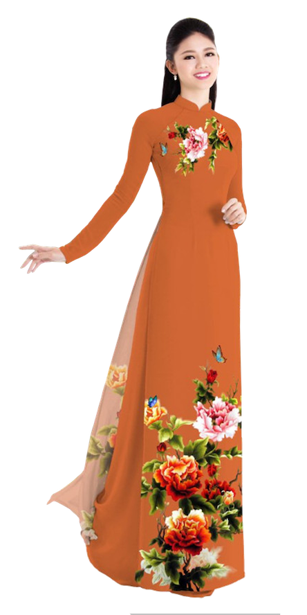 Winter Coral Ao Dai