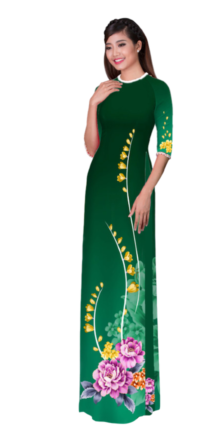 Winter Dartmouth Ao Dai