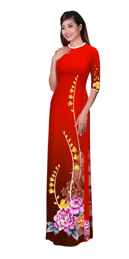 Winter Rufous Ao Dai