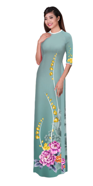 Winter Manatee Ao Dai