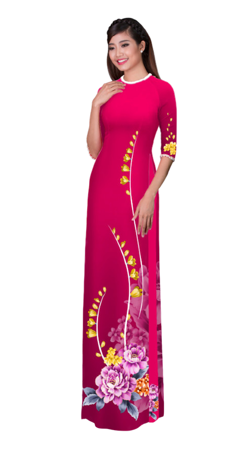 Winter Ruby Ao Dai