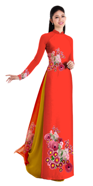 Fall Red Ao Dai